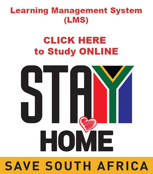 Stay at Home and Study online